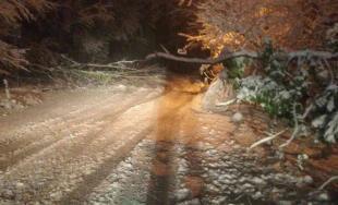 Snehová kalamita zasiahla celé Slovensko, doprava trpí hlavne v Bratislavskom a Trnavskom kraji